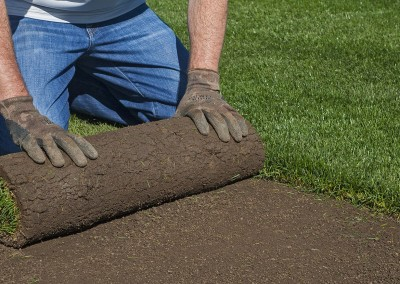 Supply and installation of instant lawn or artificial turf