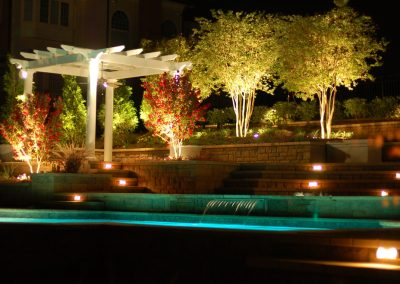 Awe-Inspiring-Lighted-Trees-Decorating-Ideas-Gallery-in-Pool-Traditional-design-ideas-