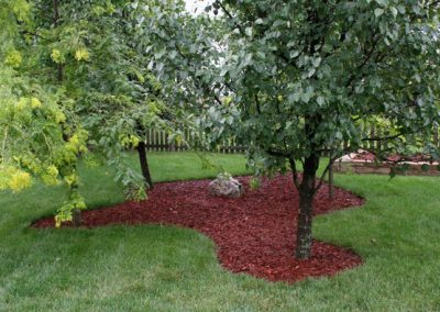 Red dyed organic pine garden mulch around feature trees