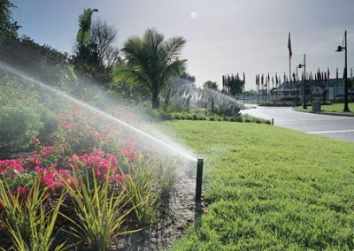 Irrigation system with fixed long range spray heads
