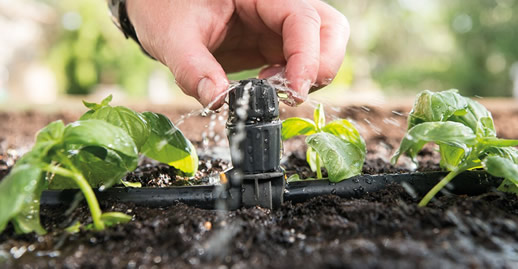 Fine tuning of your drip irrigation system