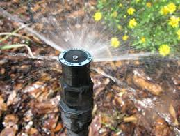 Fixed spray water system for lawns and garden beds