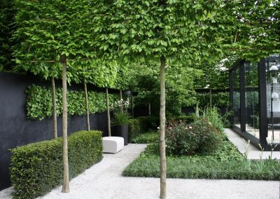 Advanced feature trees pleached